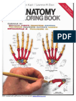 anatomy coloring book - The Human Brain Coloring Book
