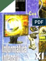 Informatica intensiv