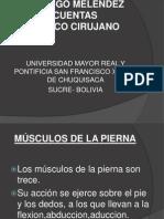 Musculo de La Pierna[1]