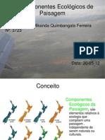Os componentes Ecológicos da Paisagem