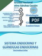 Glandulas Endocrinas - Histología