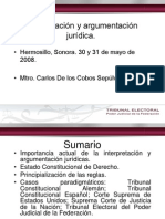 De los Cobos Sepulveda Carlos-Interpretación y argumentación juridica