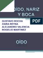 Exposicion Completa Oido Nariz Boca