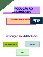 AULA 02-INTRODUÇÃO AO METABOLISMO