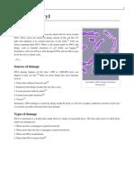 Simple Wiki PDF