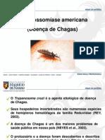 3 Doenca de Chagas