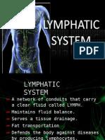 23424331 Lymphatic System