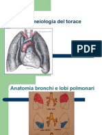 Semeiologia Del Torace Cattolica