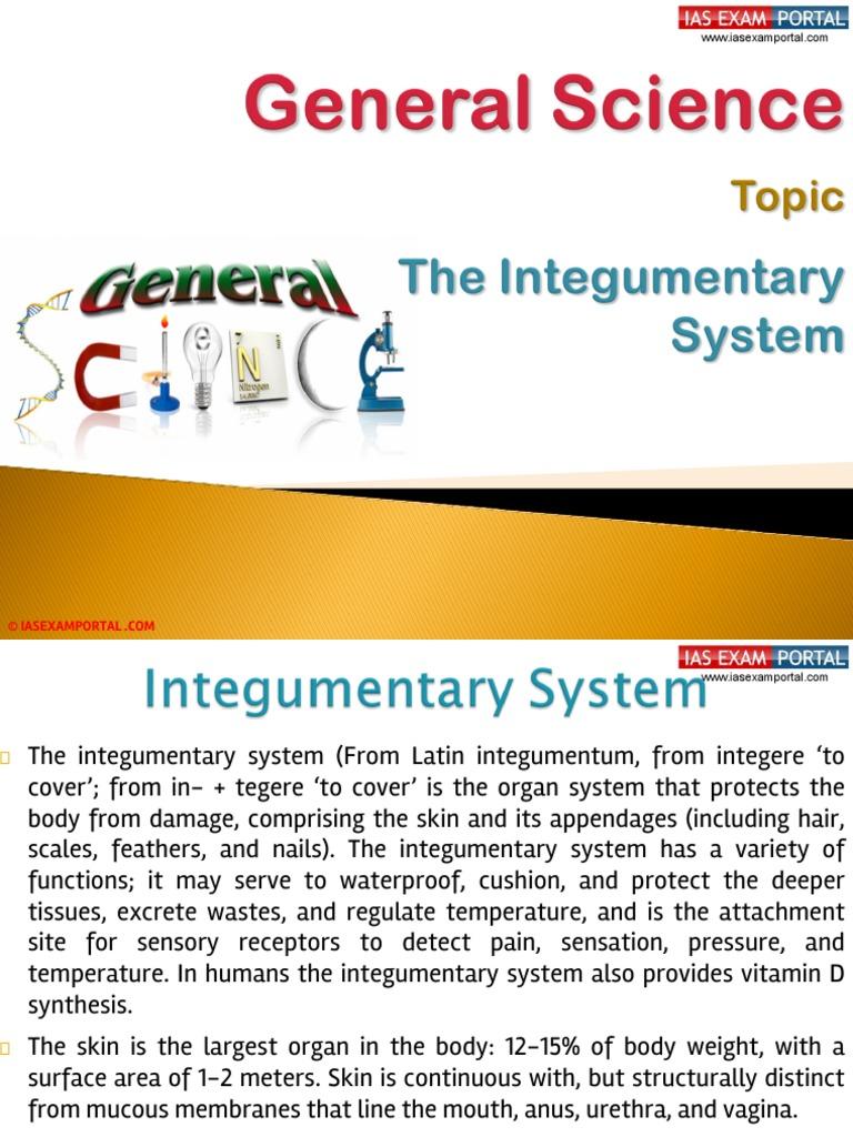 33b The Integumentary System Integumentary System Skin