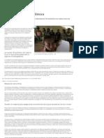 Ensayos de la polémica (ensayos médicos). Público.es