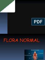 Flora Normal 2008