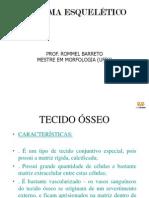 Aula Ps-graduao Em Anatomia Osteologia i