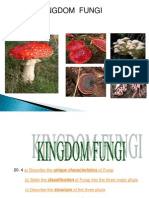11.4 Kingdom Fungi
