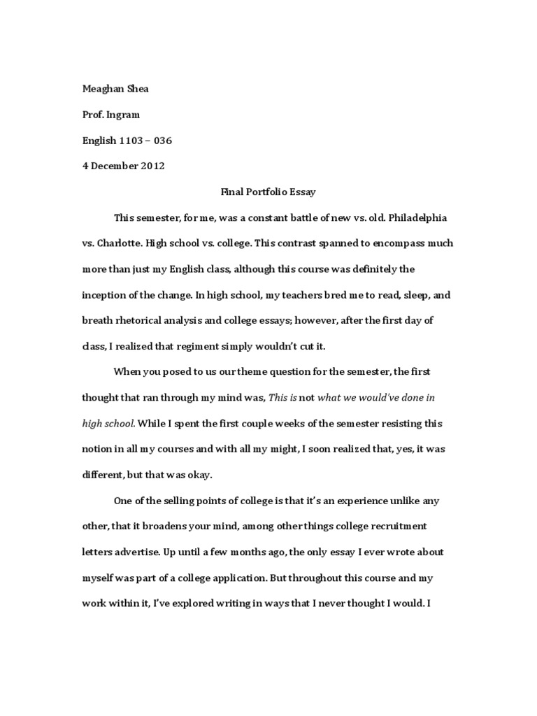 portfolio analysis essay