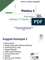 ppt pleno 3