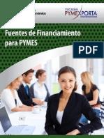 Fuentes de Financiamiento para PyMEs