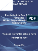 Novo Tribunal Do Juri