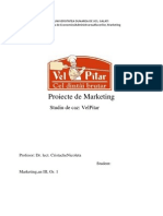 Proiecte de Marketing - Studiu de Caz VelPitar