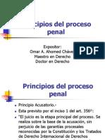 Principio Proceso Penal