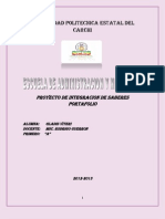 Proyecto de Integracion de Saberes Portafolio