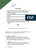 Cap1-Introdução à administração e às organizações