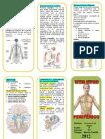 triptico sistema nervioso