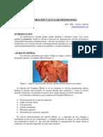 Degeneracion Valvular Mixomatosa