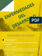 Enfermedades Del Desarrollo Expo[1]