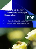 Sunu1-Ca-P-2 mart (Prof. Dr. Sabahattin Muhtaroğlu)