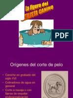elpeluqueroylapeluqueracanina-110222080221-phpapp02 (1)