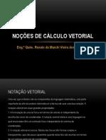 Noções de Cálculo Vetorial