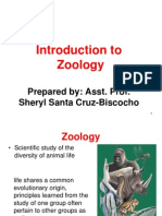 Introduction to Zoology Nov07