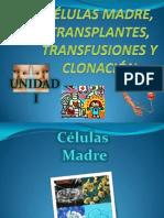 Celulas Madre y Clonacion