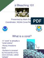 Coral Bleaching 6-7-06