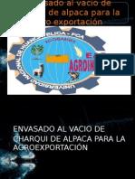 Proyecto Final Agroexportacion [Autoguardado]