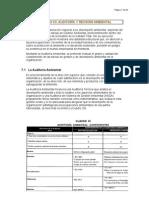 Auditoría Ambiental II