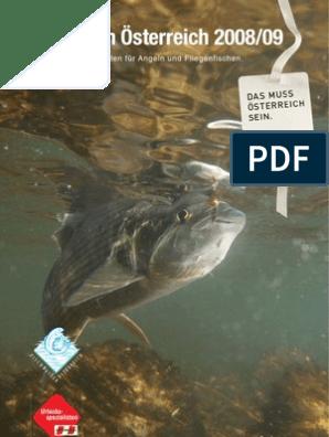 Nass Trocken Forelle Fliegen Fliegenfischen Bass Köder Haken Stream HH