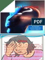 Cefalea DIAPOSITIVAS DAYANA