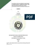ANALISIS TATANIAGA DAN ELASTISITAS TRANSMISI HARGA CPO INTERNASIONAL TERHADAP HARGA TBS (TANDAN BUAH SEGAR) KELAPA SAWIT.pdf