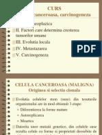 05 - Carcinogeneza