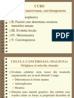 Celula canceroasa