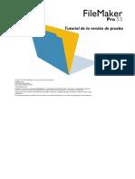 Manual FileMaker