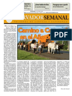 Observador semanal del 06/12/2012