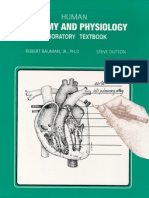 Human Anatomy Workbook2