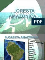 02 Floresta Amazônica