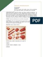 Fascículo 6 – Aprendiz de cocina