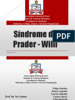 Síndrome de Prader - Willi
