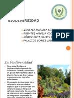 BIODIVERSIDAD - DIVERSIDAD BIOLÓGICA