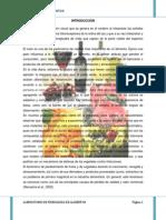 practica nº2 color en los alimentos