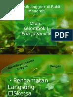 Presentasi Anggrek Menoreh 2 (Better)